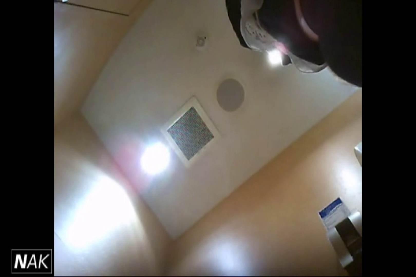 せん八さんの厠観察日記!2点監視カメラ 高画質5000K vol.17 厠  96連発 17